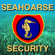 to seahoarse.com